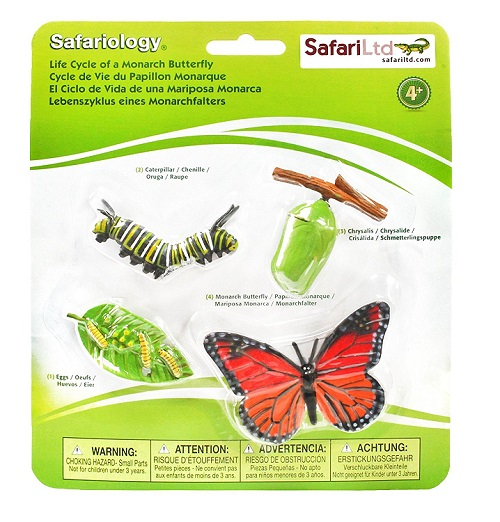 butterfly-life-cycle-figurines