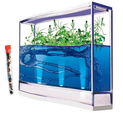 giant-lighted-ecosystem-ant-habitat-with-1-tube-of-ants-400×369