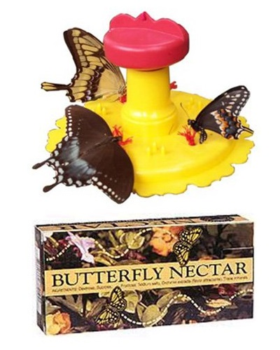 butterfly-feeder-with-butterfly-nectar