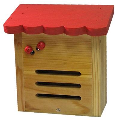 2020-ladybug-houses-l