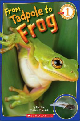 from-tadpole-to-frog-book