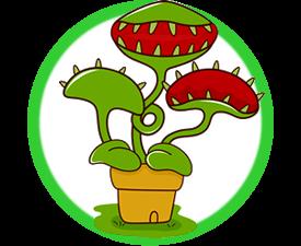 Amazing Carnivorous Plants
