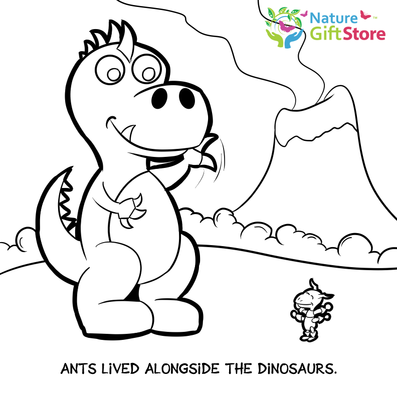 Printable Coloring Pages - Nature Gift Store