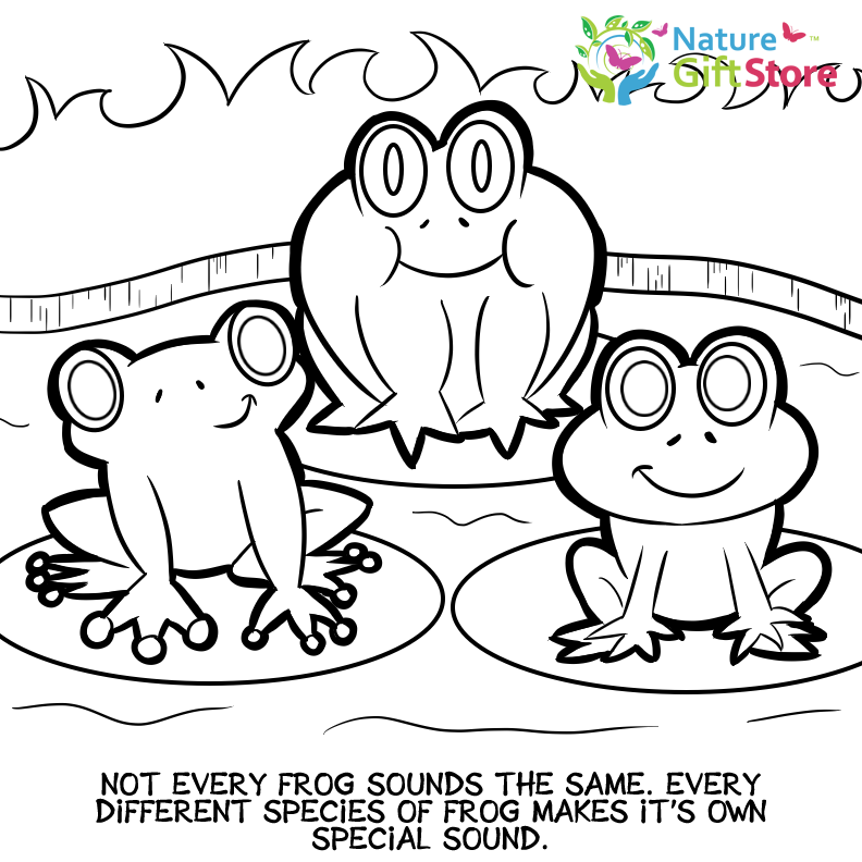 Big Frog coloring page | Free Printable Coloring Pages | 792x792