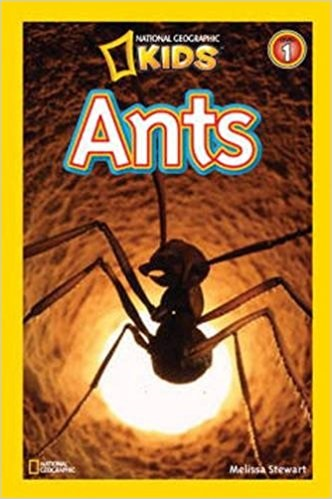ants-book-national-geographic-kids-332×499-38145
