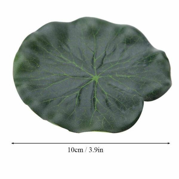 dry-land-lily-pad