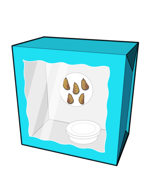 crafty-box-blue-box-with-chrysalis-and-feeder-500x650